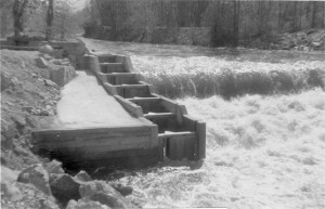 Photo of Mission Creek fish ladders