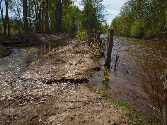 Mission Creek restoration already performing as expected