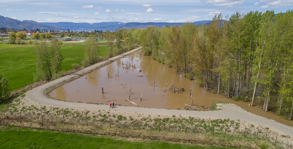 Mission Creek restoration project helps reduce flooding risk